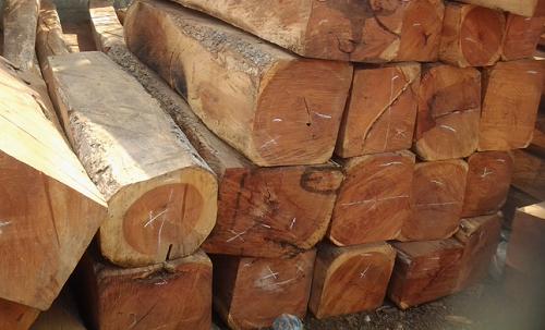 chất liệu gỗ